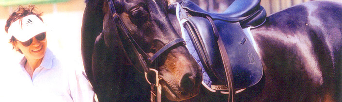 a horse without a rider essay Reproduction in whole or in part in any form or medium without written  permission of the horse media group llc is prohibited the horse, the  horse logo,.